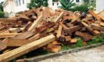 Thu giữ 716 hộp gỗ lậu