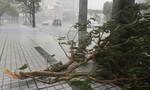 Bão Trà My đổ bộ Nhật Bản, nhiều khu vực mất điện