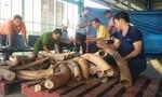 Gần 1 tấn ngà voi, vẩy tê tê chuyển bằng máy bay từ Nigeria về Việt Nam