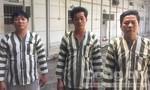 """Thuê xe tải trộm hai máy điện biến thế """"khủng"""" ở Sài Gòn"""