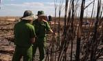 Điều tra nguyên nhân cháy hơn 100ha mía đang cho thu hoạch