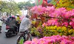 Một góc Sài Gòn 'nhuộm đỏ' bởi hàng trang trí Tết