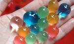 Cảnh giác với loại hạt nở trong đồ chơi trẻ em