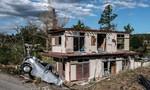 Nhật điều 110.000 người cứu người dân mắc kẹt do bão Hagibis