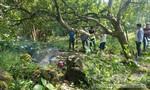 """Điều tra cái chết bí ẩn của """"cò"""" đất trong vườn điều"""