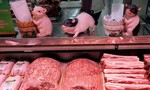 Thịt lợn đắt đỏ vì nhiễm dịch tả, dân Trung Quốc chuyển qua ăn thịt... chó