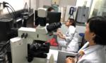 Việt Nam hội nhập quốc tế trong lĩnh vực tế bào gốc