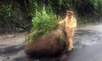 CSGT dọn dẹp khối đá khổng lồ trên đường Hồ Chí Minh