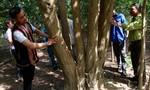 Đồng bào dân tộc Bahna chung tay bảo vệ rừng gỗ trắc quý hiếm