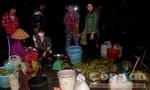 Cận cảnh chợ cá đồng họp lúc 0 giờ ở miền Tây