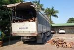 Bắt xe tải vận chuyển trái phép hơn 18 tấn gỗ trắc
