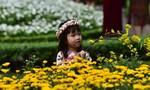 Người Sài Gòn đến Hội hoa xuân Tao Đàn thưởng lãm