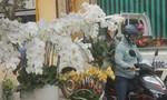 TP.Biên Hoà: Nhộn nhịp chợ hoa 28 Tết