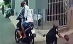 """Truy """"nóng"""" tên cướp giật tài sản du khách ở Sài Gòn"""