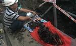 Thi công cống thoát nước, phát hiện hơn 100 chiếc xương, nghi xương người