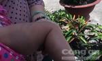 Bé gái 8 tháng tuổi nghi bị bạo hành trong phòng trọ