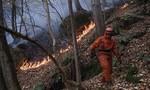 Hai sinh viên bị phạt 30 triệu USD vì ăn đồ nướng gây cháy rừng