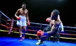 Clip hai võ sĩ cùng đổ gục vì dính đòn của nhau