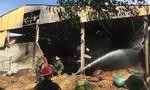 Nhà xưởng chứa 400 tấn lạc bốc cháy, thiệt hại 10 tỷ đồng