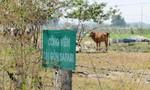 TTCP chỉ ra hàng loạt sai phạm tại dự án Công viên Sài Gòn Safari