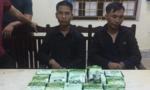 Bắt 15 kg ma túy đá từ Lào đưa vào Sài Gòn tiêu thụ