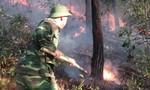 Hơn 1.000 người khống chế bốn đám cháy rừng giữa trời nắng nóng