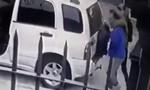 Clip hai con chó cứu chủ thoát khỏi tên cướp có súng