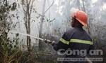 Nhiều héc ta rừng ở Quảng Nam và Quảng Ngãi bị cháy rụi