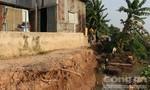 Sạt lở sông Vàm Cái Hố, di dời khẩn cấp 27 hộ dân
