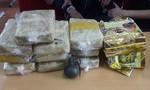 Bắt hai kẻ vận chuyển 60.000 viên ma túy rút chốt lựu đạn chống trả