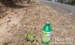16 điểm dọc QL24 bị phun thuốc diệt cỏ