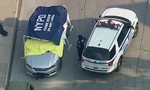 Hai đứa trẻ sinh đôi gần 1 tuổi tử vong vì bị cha bỏ quên trong xe hơi