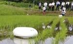 Clip rô bốt nhổ cỏ dại tự động cho các cánh đồng lúa