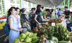 Ngày hội xanh Phú Mỹ Hưng lần 4 - 2019: Sống xanh – Sống khỏe