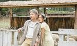 """Cô gái Hàn Quốc yêu nhạc Việt """"gây sốt"""" bảng xếp hạng Vpop"""