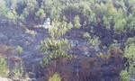 Cháy hơn 80 ha rừng keo của người dân huyện Duy Xuyên