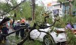 Giông lốc làm cây đổ hàng loạt ở Hà Nội, đè chết người đi đường