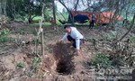 """Người dân tìm thấy gỗ sưa """"khủng"""" trị giá hàng tỷ đồng dưới đất"""