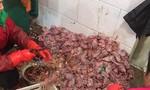 Những ngôi chợ ướt trở thành tâm điểm làm bùng phát dịch viêm phổi Vũ Hán