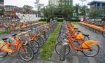 TPHCM lập đề án phát triển xe buýt mini, xe đạp công cộng
