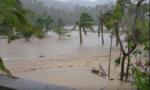 Siêu bão Goni suy yếu sau khi quét qua Philippines, 4 người chết