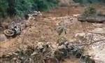 Quảng Nam: Núi lại sạt lở khi lực lượng đang tìm kiếm người mất tích