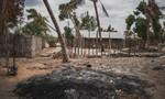 Phiến quân thân IS chặt đầu hơn 50 người ở Mozambique