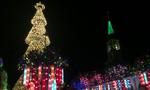 Cây thông Giáng sinh 5 tầng, cao hàng chục mét ở Đồng Nai
