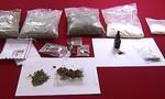 Phát hiện 9 chất tương tự ma túy chưa có trong danh mục