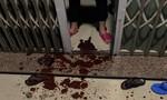 """Nhiều gia đình ở Đà Nẵng bị """"khủng bố"""" bằng chất bẩn"""