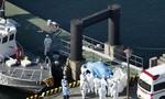 Ca tử vong đầu tiên do COVID-19 tại Nhật Bản