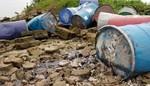 Nhiều thùng phuy nghi chứa hóa chất bị đổ trộm xuống sông Hồng