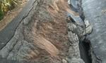 Sạt lở nghiêm trọng ở Cà Mau