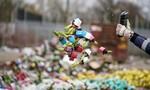Covid-19 khiến sức mua giảm, Hà Lan chặt bỏ hàng triệu cây hoa tulip